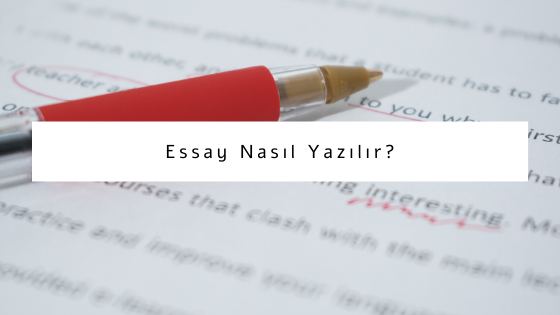 essay nasıl yazılır