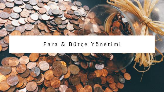 para ve bütçe yönetimi hakkında yazılar